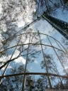 eucFACE - free air carbon dioxide enrichment experiment in a eucalyptus forest (hawkesbury institute for the environment)