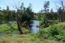 panorama: yarramundi reserve. 2012-10-20 04:23:24, DSC-RX100.