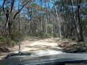driving through wollemi national park, blue mountains. 2012-10-27 02:58:31, Galaxy Nexus.