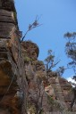 rock climbing with john & carrie at mt. piddington, blue mountains