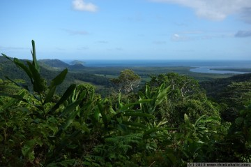 stunning views from alexandra lookout (walu wugirriga), daintree national park