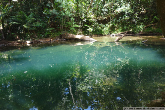 blue water hole, cape tribulation