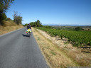 biking through vineyards and orchards, near fleury
