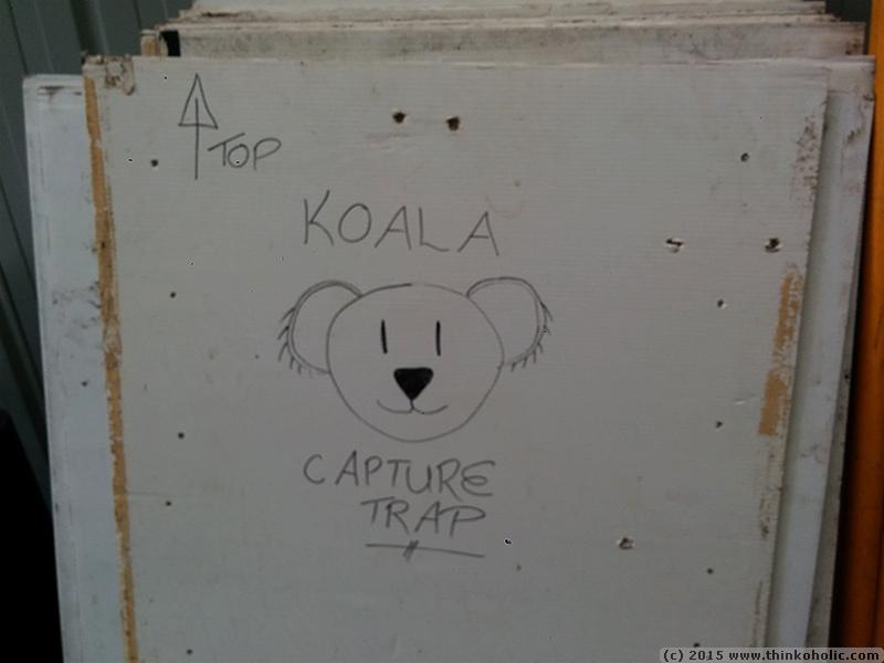 koala capture traps