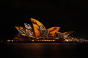 turtles on the sydney opera house