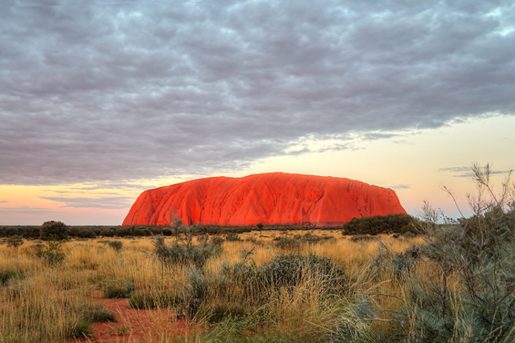 uluru in golden sunset light