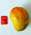 Mangos der Sorte Badami (Foto: Challiyan, cc-by-sa 2.5)