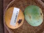Mangos der Sorte Cushman (Foto: Asit K Ghosh, cc-by-sa 3.0)