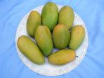 Mangos der Sorte Dasheri / Dusheri (Foto: Khalid Mahmood, cc-by-sa 3.0)