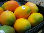 Mangos der Sorte Keitt (Foto: Markus Nolf / Vom Essen Besessen)