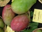 Mangos der Sorte Lancetilla (Foto: Asit K. Ghosh, cc-by-sa 3.0)