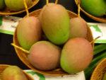 Mangos der Sorte Parvin / Parvim (Foto: Quam256, cc-by-sa 3.0)