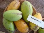 Mangos der Sorte Lemon Meringue / Po Pyu Kalay (Foto: Asit K. Ghosh, cc-by-sa 3.0)