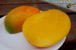 Mangos der Sorte R2E2 (Foto: Markus Nolf / Vom Essen Besessen)
