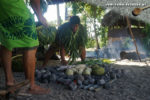 Traditionelles Kochen in Samoa: Der Erdofen wird mit Kochbananen, Brotfrucht und Taro-Wurzeln belegt. (Foto: Markus Nolf / Vom Essen Besessen)
