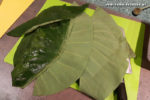 Palusami Zubereitung: Taroblätter bzw. Spinatblätter waschen, die harte Mittelrippe der Blätter wegschneiden, und ggf. unschöne Blattränder entfernen.