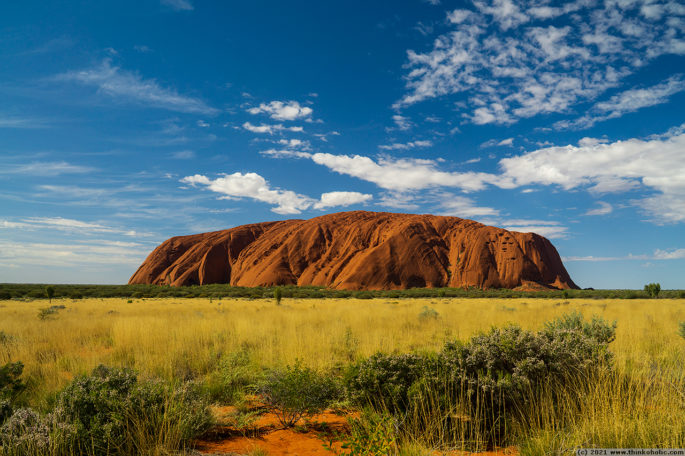 Uluru, standing out from the surrounding golden grassland